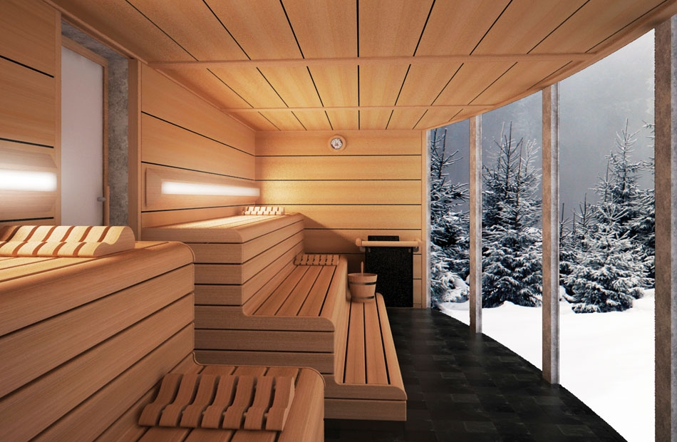 Photo n°1 : Saunas